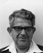 Avraham Negev